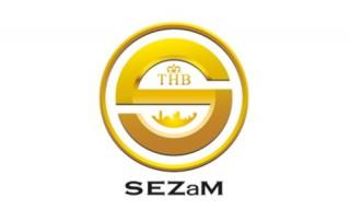 THB SEZaM- System Ewidencji Zasobów Miejskich